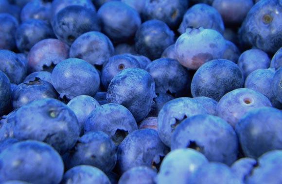 food memory blueberries