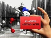 amino acids alanine