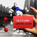 amino acids glutamic