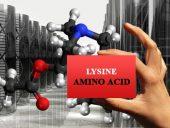 amino acids lysine