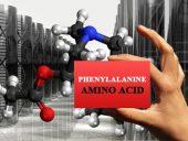 amino acids phenylalanine