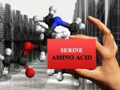 amino acids serine