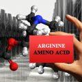 amino acids arginine