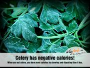 Amazing Celery Facts