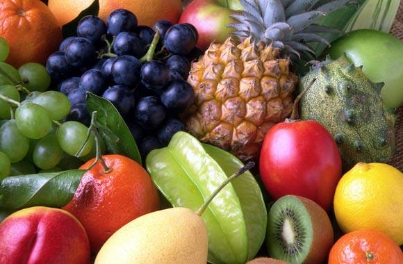 fruits brain